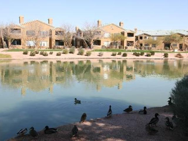 Lakeview at Superstition Springs Apartments photo #2