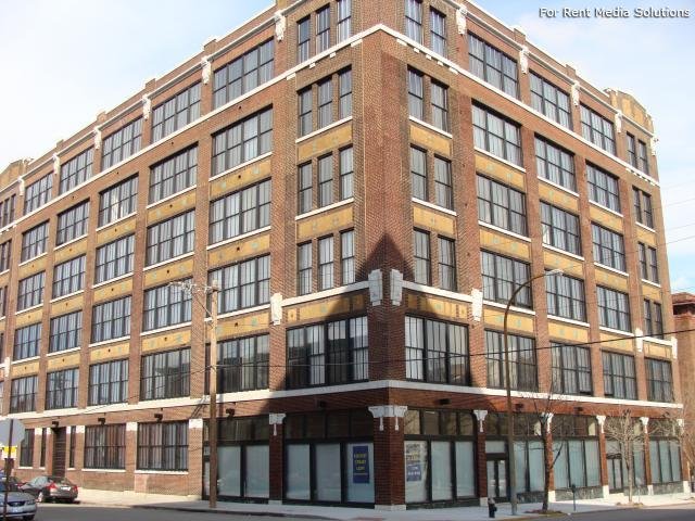 Locust Street Loft Apartments photo #1