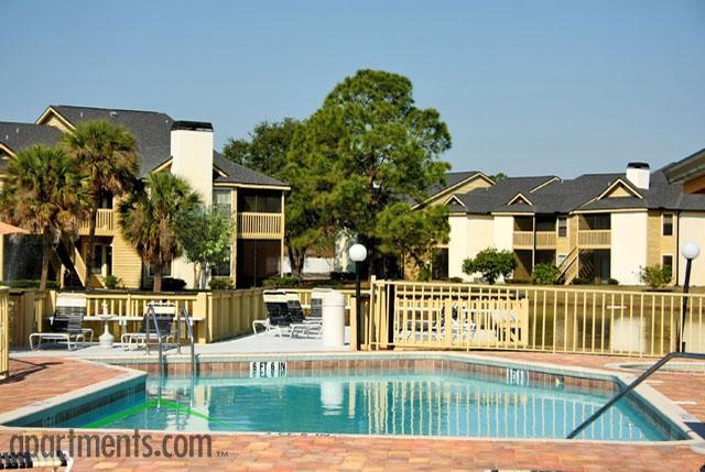 Carrollwood Palms Apartments photo #1
