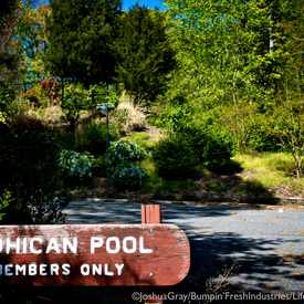 Photo of Mohican Swimming Pool