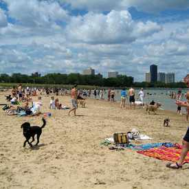 Photo of Montrose Beach in Albany Park