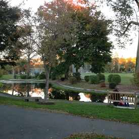 Photo of Memorial Park Duck Pond