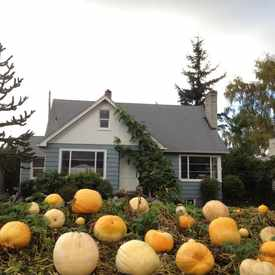 Photo of Magnolia Pumpkin House in Magnolia