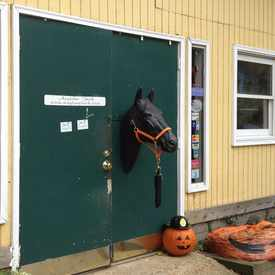Photo of Woodland Tack Store DBA Anytime Tack
