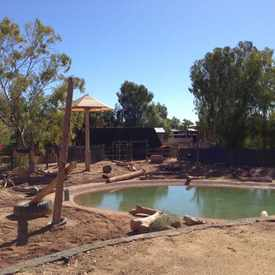 Photo of Asian Elephant Exhibit  in Camelback East