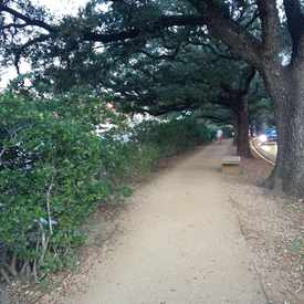 Photo of Rice Running Trail in University Place