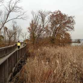 Photo of Dyke Marsh Trail