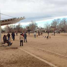 Photo of Stapleton Dog Park in Stapleton