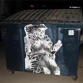 Photo of Dumpster stick up in Central City