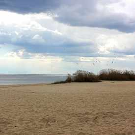 Photo of Venetian Beach, Lindenhurst, NY 11757