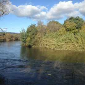 Photo of Napa River Walking Trail