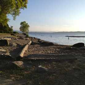Photo of Madrona Park