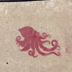 Photo of Stencil Sidewalk in North Park