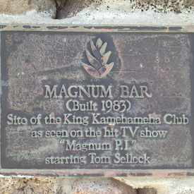 Photo of Magnum Bar