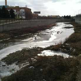 Photo of Zumbro River
