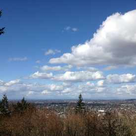 Photo of Sehome Hill in Western Washington University