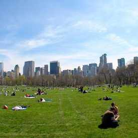Photo of Sheep Meadow in Upper West Side