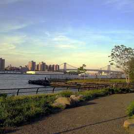 Photo of Brooklyn Bridge Park in Downtown