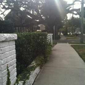 Photo of St Johns Avenue, Jacksonville, Florida in Riverside