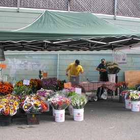 Photo of Inner Sunset Farmers Market in Inner Sunset