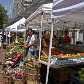 Photo of City Hall Farmers Market in Government Center