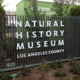 Photo of Natural History Museum  in South Los Angeles