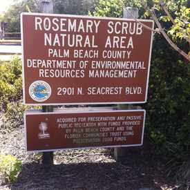 Photo of Rosemary Scrub Natural Area