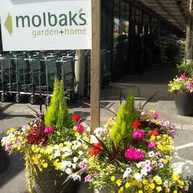 Photo of Molbak's  in Woodinville