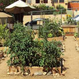 Photo of Altadena Community Pocket Garden in North Park