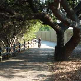Photo of Saratoga Creek Park & Trail in West San Jose