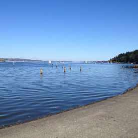 Photo of Seward Park in Seward Park