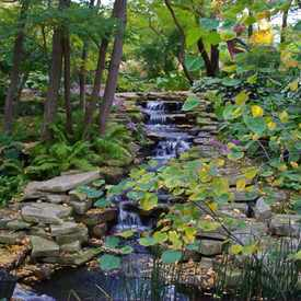 Photo of Lauritzen Gardens