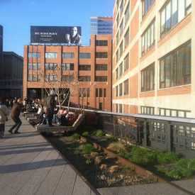 Photo of The High Line in Chelsea