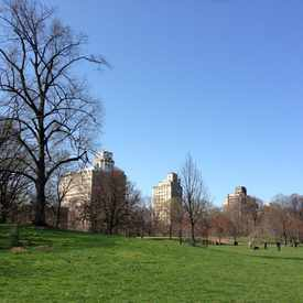 Photo of Prospect Park in Kensington