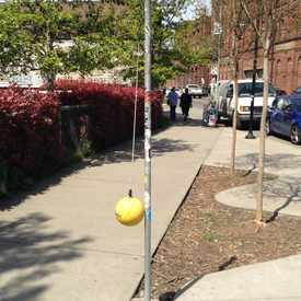 Photo of Tetherballl On The Street in Georgetown