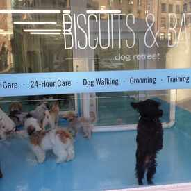 Photo of Biscuits and Bath in Tribeca