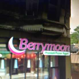 Photo of Berrymoon Premium Frozen Yogurt in Park West