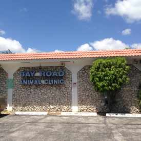 Photo of Bay Road Animal Clinic