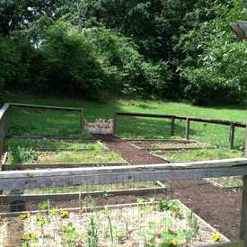 Photo of Carson Community Garden in Reynoldstown