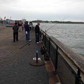 Photo of Fishermen in Battery Park in Battery Park