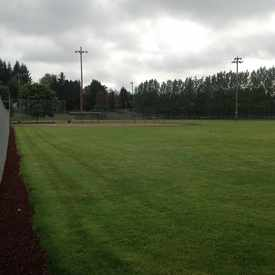 Photo of Baseball Fields For Little League  in Bagley Downs
