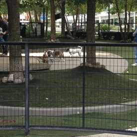 Photo of Lake Shore East Dog Park in Near East Side
