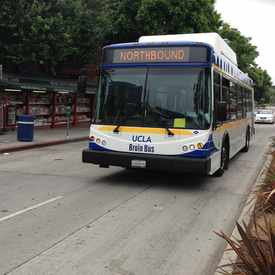 Photo of UCLA BRUIN BUS in Westwood