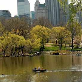 Photo of Central Park in Central Park