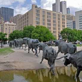 Photo of Pioneer Plaza Cattle Sculptures in Government District