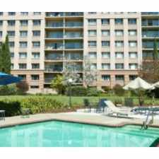 Rental info for Tan Plaza Continental in the Palo Alto area