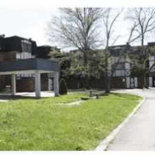 Rental info for NEWLY RENOVATED APARTMENTS AVAILABLE  TODAY! in the Roselawn area