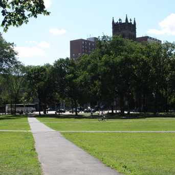 Photo of New Haven Green in Downtown, New Haven