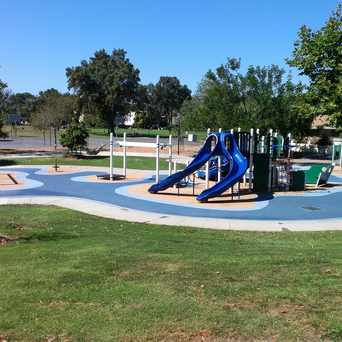 Photo of Greer Park Skateboard Park in Midtown, Palo Alto