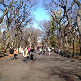 Photo of Literary Walk Central Park in Central Park, New York